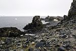 Half Moon Island, Antarctica. (24914212366).jpg