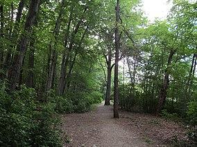 Hammond Pond Reservation, Chestnut Hill MA.jpg