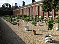 Hampton Court Palace (3037111517).jpg