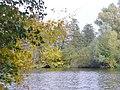 Havelkanal bei Buchow - geo.hlipp.de - 43259.jpg