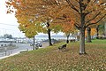 Havre de Grace, Maryland - panoramio (42).jpg