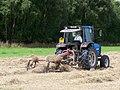 Hay Lining Beside Poldar Moss - geograph.org.uk - 1444495.jpg