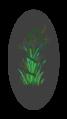 Herbal Asclepios rod 3.png