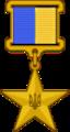 Hero of Ukraine wearers copy.png