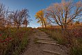 Hike to the Hallaway Hill Overlook - Maplewood State Park (23916499048).jpg