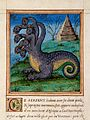 Histoires prodigieuses; Serpent embasme... WMS 136 Wellcome L0025568.jpg