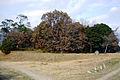 Hitozuka Kofun Saijo Kofun-gun Kakogawa Hyogo pref Japan01s3.jpg