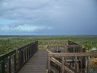 Hobe Sound FL Jonathan Dickinson SP obs tower view03.jpg
