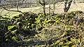 Holehouse Mill ruins. Gable end. Holehouse Holm, Sorn, East Ayrshire.jpg