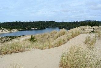 Jessie M. Honeyman Memorial State Park - Image: Honeyman Memorial State Park and Cleawox Lake