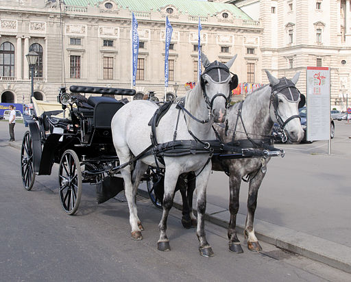 Horse drawn carriage - Vienna
