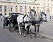Horse drawn carriage - Vienna.jpg