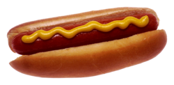 Hot dog with mustard.png