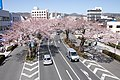 Ibaraki Prefectural Route-293 13.jpg