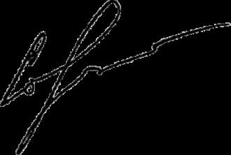 Ihor Sorkin - Image: Ihor Sorkin Signature 2013