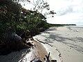 Ilha das Peças 42.jpg