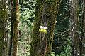 Indicador de ruta (14 de abril de 2017, Parque Natural de las Batuecas y Sierra de Francia).jpg