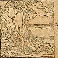 Ioannis Pierii Valeriani Bellvnensis Hieroglyphica, sive, De sacris Ægyptiorvm aliarumq gentium literis commentariorum libri LVIII - cum duobus alijs ab eruditissimo viro annexis - accesserunt loco (14561938807).jpg