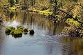 Jägala jõgi Anija vallas.jpg
