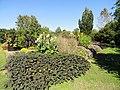 J. C. Raulston Arboretum - DSC06152.JPG