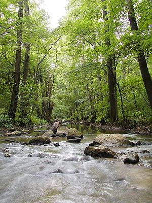 Little Carpathians Protected Landscape Area - Image: Jablonka