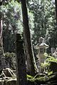 Japan 2015 (23196120912).jpg
