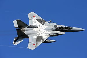 Tactical Fighter Training Group (JASDF) - F-15DJ of the Tactical Fighter Training Group (2014)