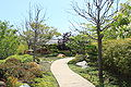 Japanese Friendship Garden Path from entrance.JPG
