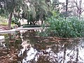 Jardín de Monforte 63.jpg