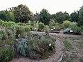 Jardin des Sens - Vouvant - 1.jpg
