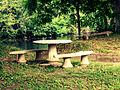 Jardin sur la Gartempe.jpg