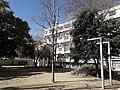 Jardins Casa Bloc.jpg