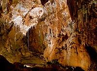 Jaskinia Gombasecka 1.jpg