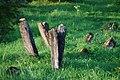 Jewish Cemetery in Lutowiska. Bieszczady Poland - panoramio (1).jpg