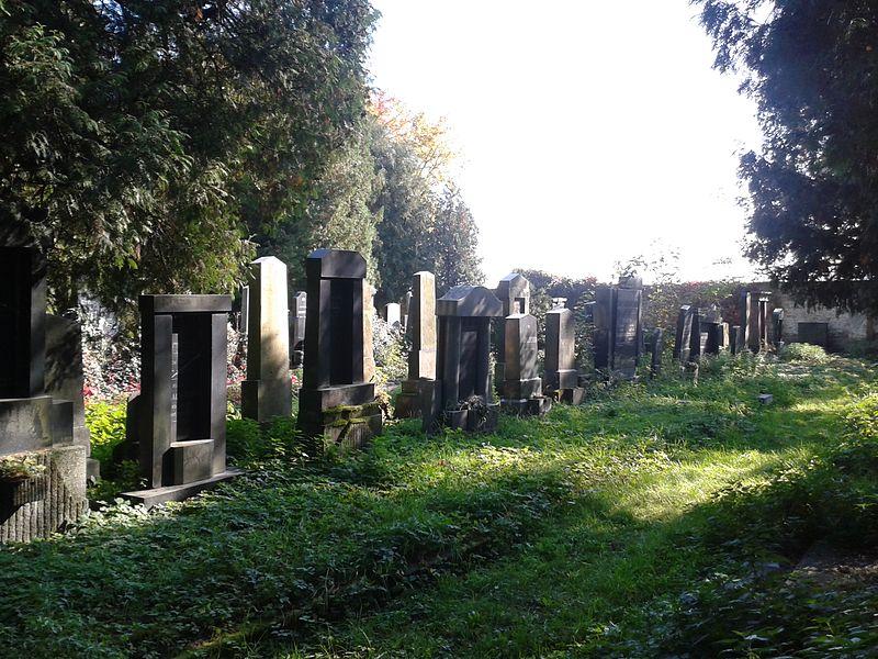 File:Jewish cemetery in Prostějov 8.jpg