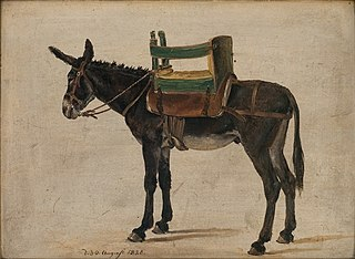 Donkey with a Chair-saddle