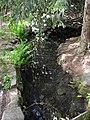 Jonsdorf-Schwarzwasserquelle-1.jpg