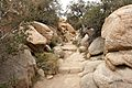 Joshua Tree National Park (3432985619).jpg