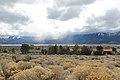 Jumbo Grade Trail - panoramio (82).jpg