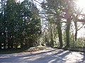 Junction of Hambledon Road with Clock Barn Lane, Busbridge - geograph.org.uk - 148742.jpg