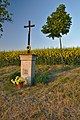 Kříž mezi Orlovicemi a Moravskými Málkovicemi.jpg