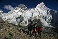 Kala Patthar-68-Everest-Lhotse-2007-gje.jpg