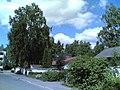 Kekomäentie - panoramio (7).jpg