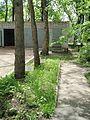 Kharkiv natural sanctuary Institute 25.JPG