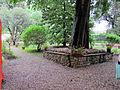 Khi florenz, giardino 14.JPG