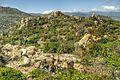 Khu bảo tồn núi chúa vùng bán khô hạn - panoramio (22).jpg