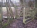 Kissing Gate and footbridge near Longbroom Shaw - geograph.org.uk - 1703294.jpg
