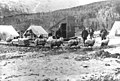 Klondikers and angora goats sled, near Skagway (J6142).jpg