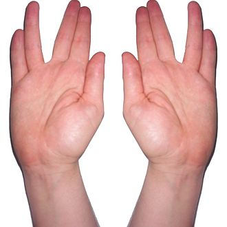 Vulcan (Star Trek) - Blessing gesture that was the inspiration for the Vulcan salute