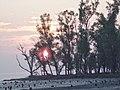 Kotka beach (১ম কটকা সৈকত)-২.jpg